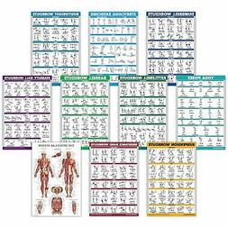 10 Fitness Planners Pack Exercise Workout Poster Set Dumbbel
