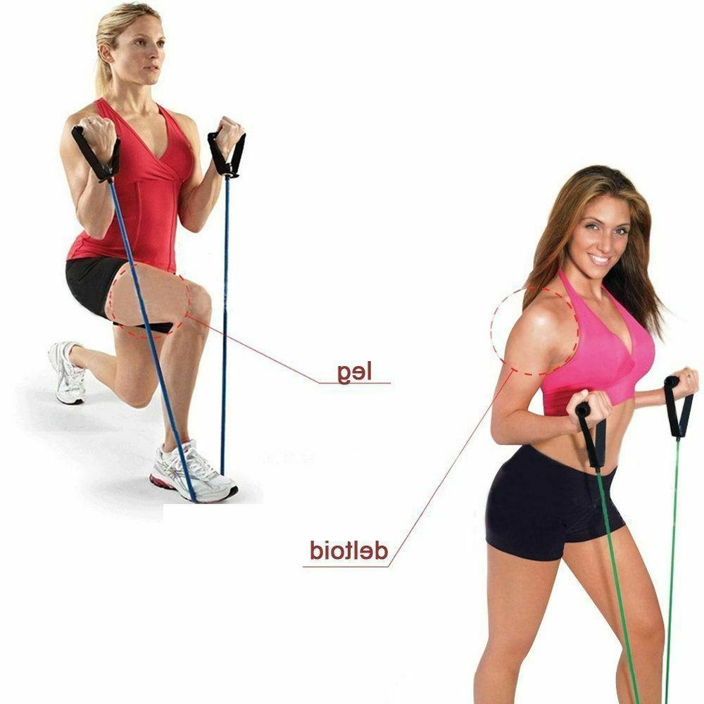 Fitness Pull Ropes Gym