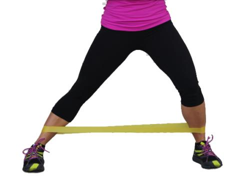 Serious Steel Fitness Loop Resistance Bands Hip and