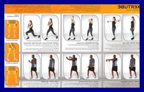 SPRI Exercise Cords All Separately